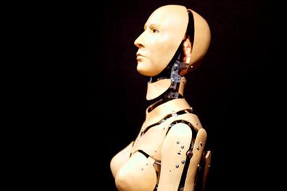An Interpreter Robot?